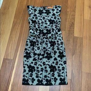 Cynthia Steffe cotton day dress 2